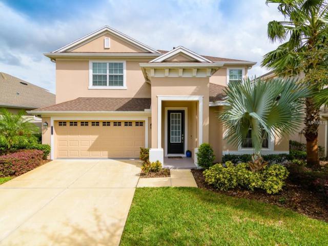 20113 Heron Crossing Drive, Tampa, FL 33647 (MLS #T2909653) :: Team Bohannon Keller Williams, Tampa Properties