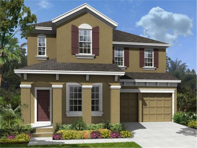 14448 Magnolia Ridge Loop, Winter Garden, FL 34787 (MLS #T2909677) :: RE/MAX Realtec Group