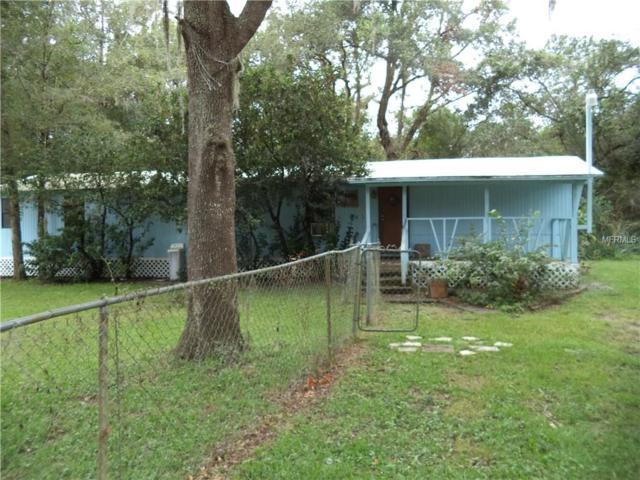 3029 Spring Green Drive, Lutz, FL 33559 (MLS #T2909735) :: Team Bohannon Keller Williams, Tampa Properties