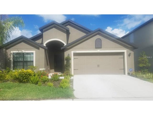 11856 Thicket Wood Drive, Riverview, FL 33579 (MLS #T2909743) :: The Duncan Duo & Associates