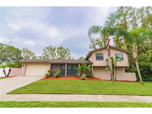 4302 Hollow Hill Drive, Tampa, FL 33624 (MLS #T2909744) :: White Sands Realty Group