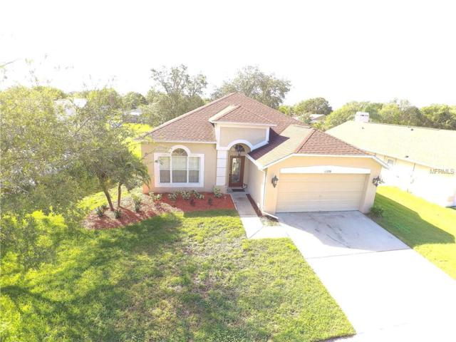 11539 Wellman Drive, Riverview, FL 33578 (MLS #T2909751) :: The Duncan Duo & Associates