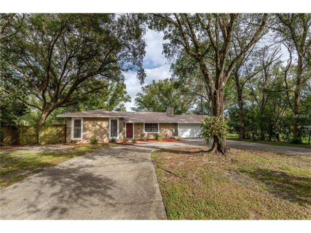 17497 Hanna Road, Lutz, FL 33549 (MLS #T2909755) :: Griffin Group