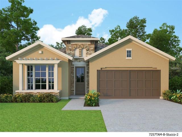 6004 Thrushwood Road, Lithia, FL 33547 (MLS #T2909758) :: The Duncan Duo & Associates