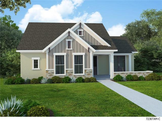 6012 Thrushwood Road, Lithia, FL 33547 (MLS #T2909763) :: The Duncan Duo & Associates