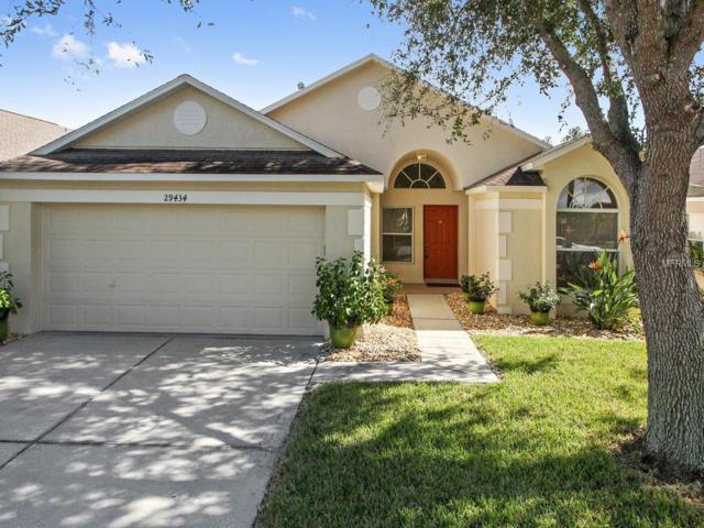 29434 Tansy Pass, Wesley Chapel, FL 33543 (MLS #T2909788) :: Team Bohannon Keller Williams, Tampa Properties