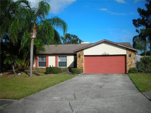12804 Slippery Elm Court, Riverview, FL 33579 (MLS #T2909842) :: The Duncan Duo & Associates