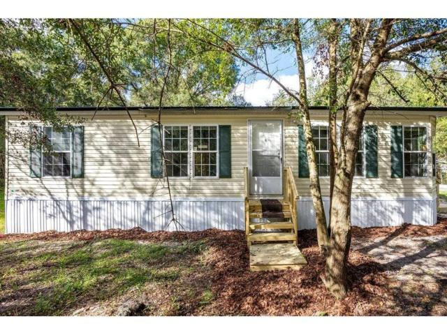 26247 Chianina Drive, Wesley Chapel, FL 33544 (MLS #T2909846) :: Griffin Group