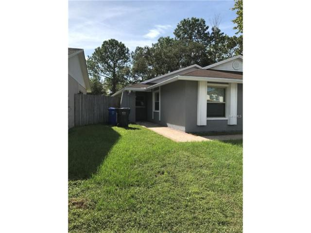 10538 Chadbourne Drive, Tampa, FL 33624 (MLS #T2909863) :: The Duncan Duo & Associates
