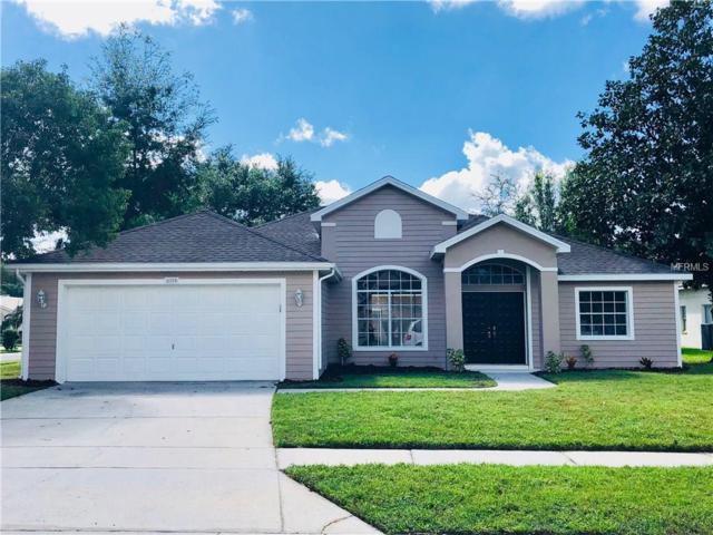 8250 Danubian Place, Trinity, FL 34655 (MLS #T2909872) :: Griffin Group