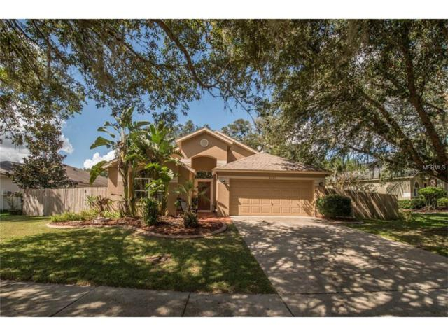 4731 Portobello Circle, Valrico, FL 33596 (MLS #T2909883) :: Griffin Group
