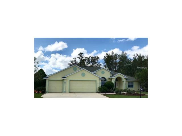 1615 Percheron Drive, Trinity, FL 34655 (MLS #T2909890) :: Griffin Group