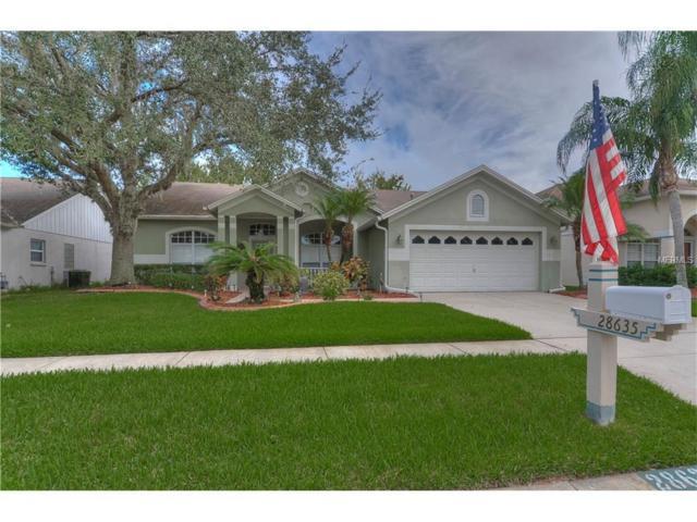 28635 Fairweather Drive, Wesley Chapel, FL 33543 (MLS #T2909901) :: Griffin Group