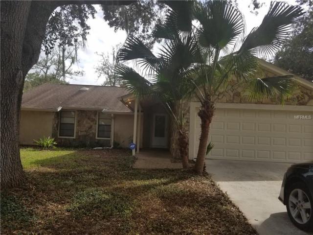 1425 Corner Oaks Drive, Brandon, FL 33510 (MLS #T2909909) :: The Duncan Duo & Associates
