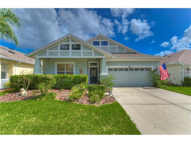 7816 Grasmere Drive, Land O Lakes, FL 34637 (MLS #T2909915) :: Team Bohannon Keller Williams, Tampa Properties