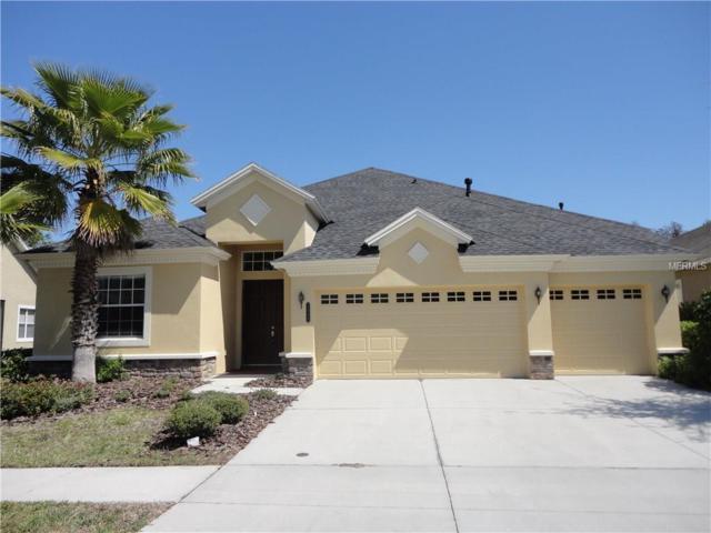 8346 Old Town Drive, Tampa, FL 33647 (MLS #T2909925) :: Team Bohannon Keller Williams, Tampa Properties