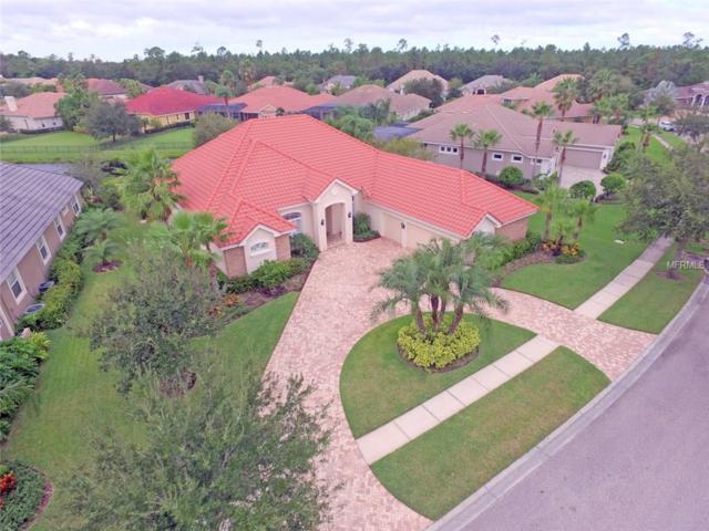 12011 Royce Waterford Circle, Tampa, FL 33626 (MLS #T2909936) :: Team Bohannon Keller Williams, Tampa Properties