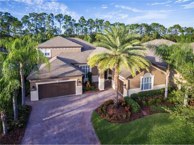 14827 Tudor Chase Drive, Tampa, FL 33626 (MLS #T2909938) :: Griffin Group