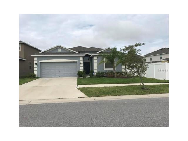 928 Peregrine Hill Place, Ruskin, FL 33570 (MLS #T2909952) :: Team Bohannon Keller Williams, Tampa Properties