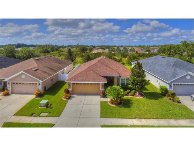 9639 Jaybird Lane, Land O Lakes, FL 34638 (MLS #T2909957) :: Team Bohannon Keller Williams, Tampa Properties