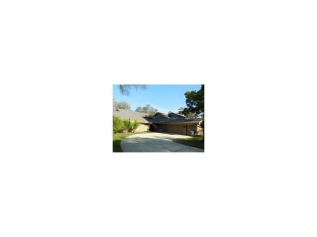 5410 Pine Bark Lane, Wesley Chapel, FL 33543 (MLS #T2909963) :: Team Bohannon Keller Williams, Tampa Properties