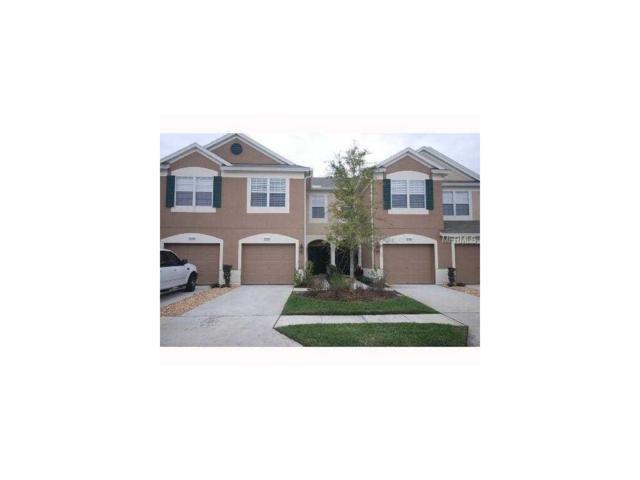 26528 Chimney Spire Lane, Wesley Chapel, FL 33544 (MLS #T2909990) :: RE/MAX Realtec Group