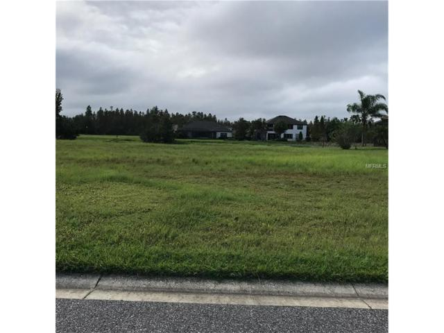 8736 Bonica Place, Land O Lakes, FL 34637 (MLS #T2910018) :: Griffin Group
