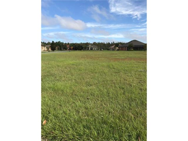 8514 Tradescant Loop, Land O Lakes, FL 34637 (MLS #T2910026) :: Griffin Group