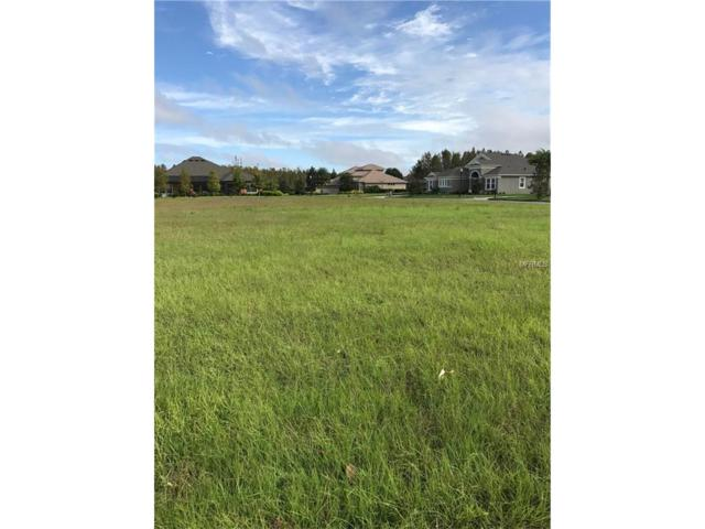 8504 Tradescant Loop, Land O Lakes, FL 34637 (MLS #T2910027) :: Griffin Group
