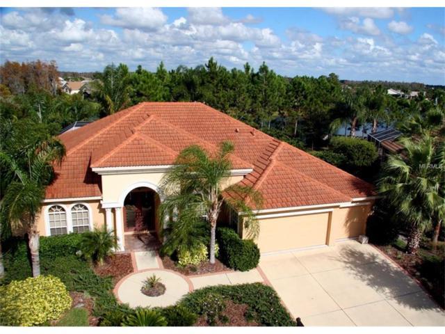 1328 El Pardo Drive, Trinity, FL 34655 (MLS #T2910034) :: Griffin Group