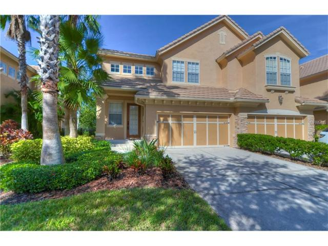 14413 Mirabelle Vista Circle, Tampa, FL 33626 (MLS #T2910059) :: Griffin Group