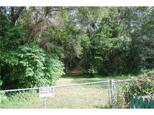 Opportunity, Dade City, FL 33525 (MLS #T2910080) :: Team Pepka