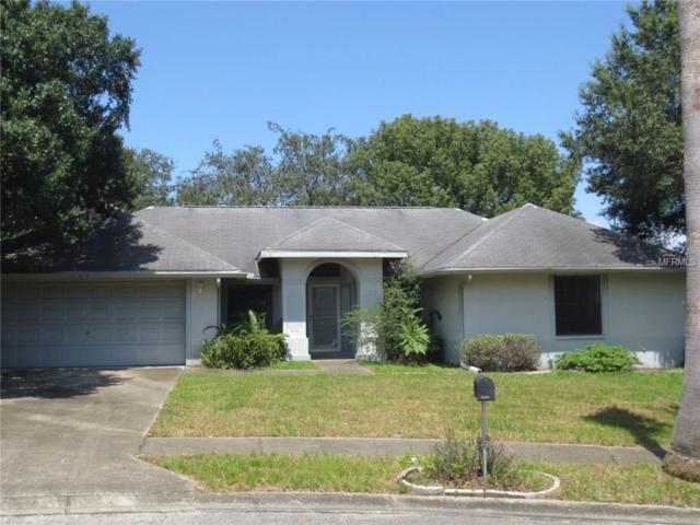 38849 Margs Court, Zephyrhills, FL 33540 (MLS #T2910126) :: Griffin Group