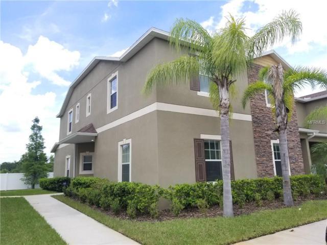 31239 Claridge Place, Wesley Chapel, FL 33543 (MLS #T2910168) :: Griffin Group