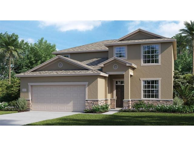3883 Cortland Drive, Davenport, FL 33837 (MLS #T2910216) :: Griffin Group
