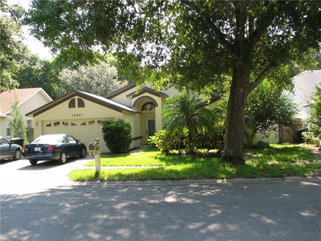 14691 Sugar Cane Way, Clearwater, FL 33760 (MLS #T2910228) :: Griffin Group