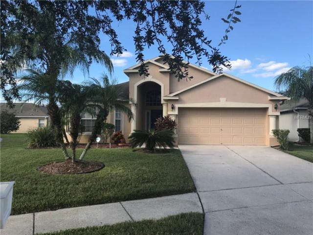 30925 Baclan Drive, Wesley Chapel, FL 33545 (MLS #T2910231) :: Griffin Group
