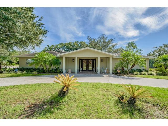 3018 Lake Ellen Drive, Tampa, FL 33618 (MLS #T2910281) :: Team Pepka
