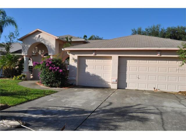 11528 Andy Drive, Riverview, FL 33569 (MLS #T2910730) :: Arruda Family Real Estate Team
