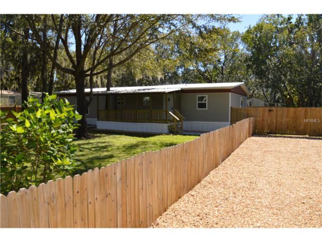 833 Ethyl Street, Brandon, FL 33511 (MLS #T2911040) :: Griffin Group