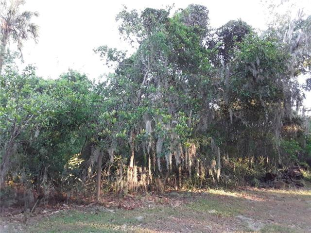 11735 John Robbins Road, Riverview, FL 33578 (MLS #T2911436) :: The Duncan Duo Team