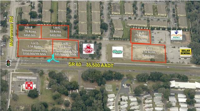 E 60TH Highway, Valrico, FL 33594 (MLS #T2912257) :: Griffin Group