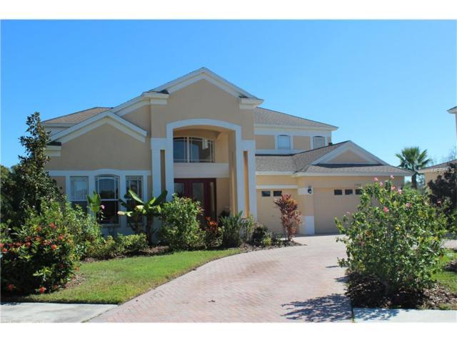 17903 Bahama Isle Circle, Tampa, FL 33647 (MLS #T2912352) :: Team Bohannon Keller Williams, Tampa Properties