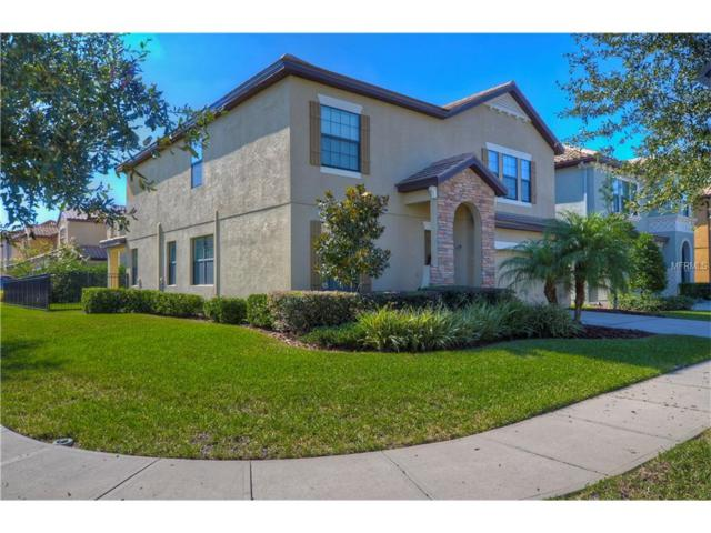 8209 Dunham Station Drive, Tampa, FL 33647 (MLS #T2912550) :: Team Bohannon Keller Williams, Tampa Properties