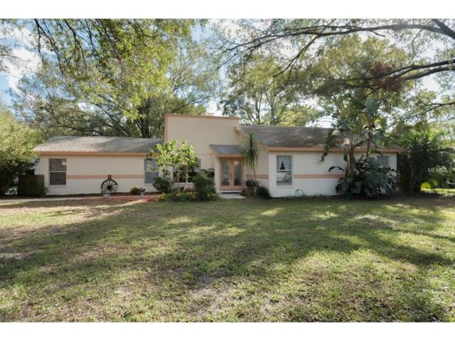 7706 Colley Road, Odessa, FL 33556 (MLS #T2912873) :: Team Bohannon Keller Williams, Tampa Properties
