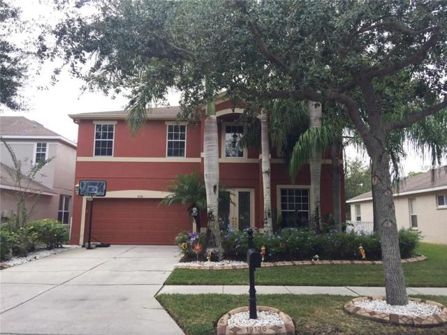 19136 Meadow Pine Drive, Tampa, FL 33647 (MLS #T2912943) :: Team Bohannon Keller Williams, Tampa Properties