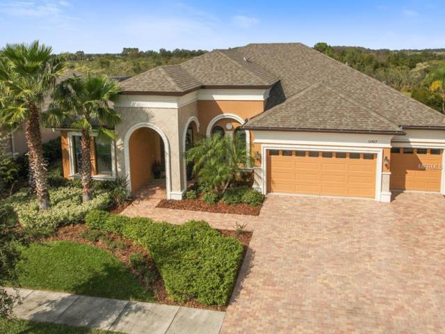 32427 Silvercreek Way, Wesley Chapel, FL 33545 (MLS #T2913016) :: Team Bohannon Keller Williams, Tampa Properties