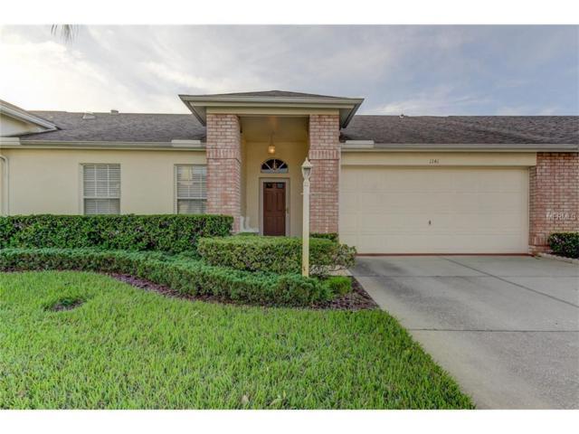 1141 Flora Vista Street, Trinity, FL 34655 (MLS #T2913309) :: Delgado Home Team at Keller Williams