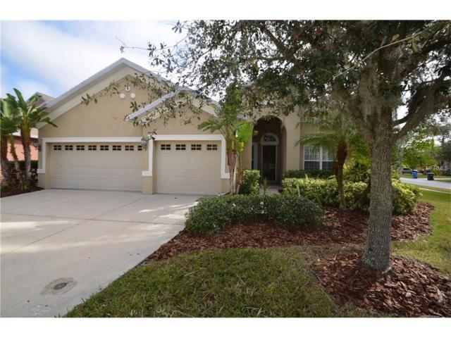 20401 Walnut Grove Lane, Tampa, FL 33647 (MLS #T2913338) :: Team Bohannon Keller Williams, Tampa Properties