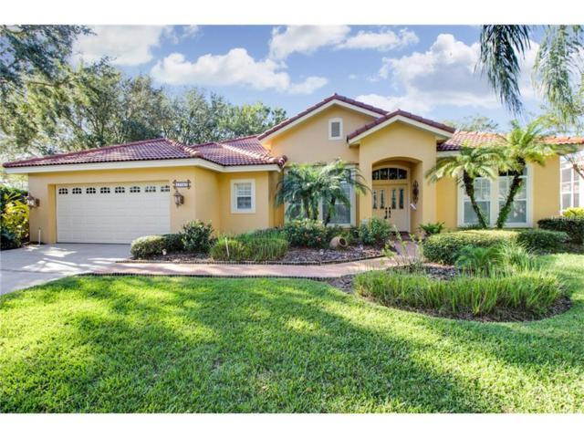 17727 Grey Eagle Road, Tampa, FL 33647 (MLS #T2913463) :: Team Bohannon Keller Williams, Tampa Properties